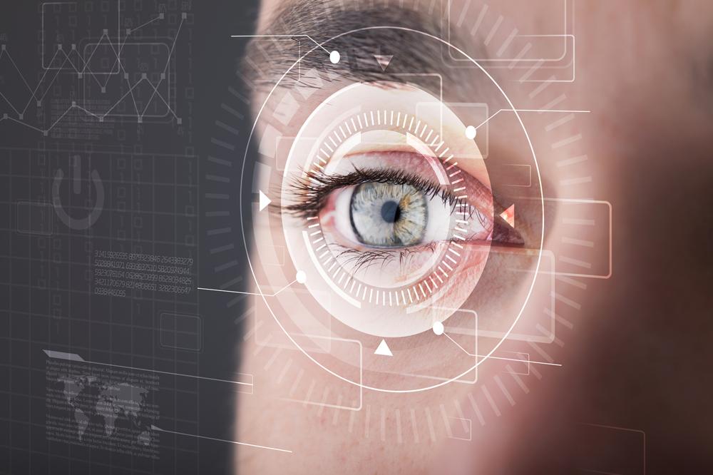 Come funziona la vista?